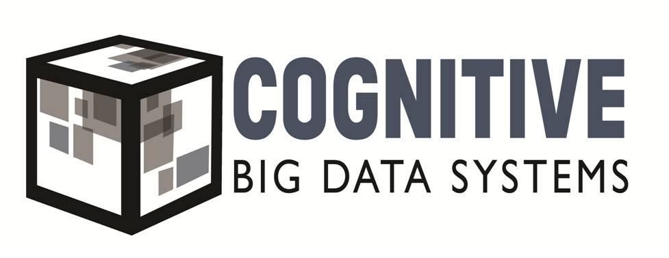 Cognitive Big Data Systems